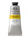 WN GALERIA 60ml 2120644 TITANIUM WHITE